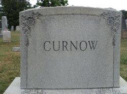 Albert Curnow