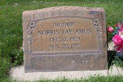 Norris Fay Amos