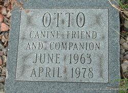 Otto Briggs