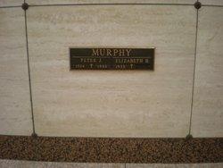 Peter J Murphy
