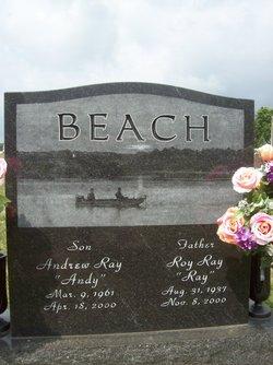 Andrew Ray Andy Beach