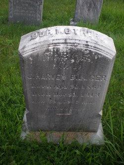Mary Ellen <i>Brey</i> Billger