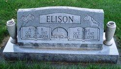Afton King <i>Bennett</i> Elison
