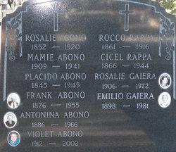 Antonina <i>Bruno</i> Abono