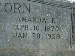 Amanda Ellen <i>Alexander</i> Alcorn