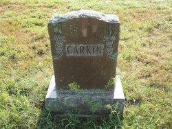 Albert Newton Carkin
