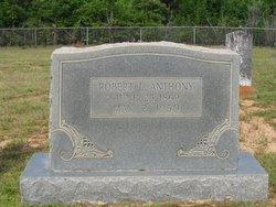 Robert Lee Anthony