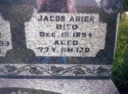 Jacob H. Arick