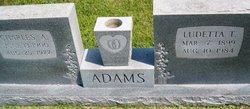 Ludetta T Adams
