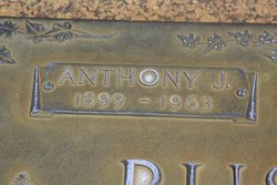 Anthony J. Bushman