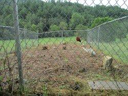 John Anderson Family Cemetery