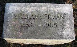 Reed Ammerman