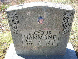 Lloyd L Hammond, Jr