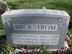 Hannah Wilhemina <i>Bergren</i> Backstrom