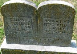 William Edward Fitzgerald