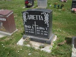 Albina Victoria <i>Pronsolino</i> Arietta