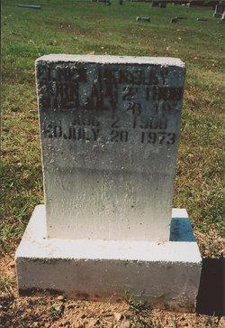 John Elmer Hensley
