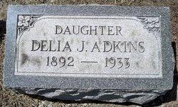 Delia J <i>Bradley</i> Adkins