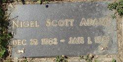 Nigel Scott Adams