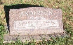 E Albert Anderson