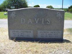 Sarah Jane <i>Newman</i> Davis