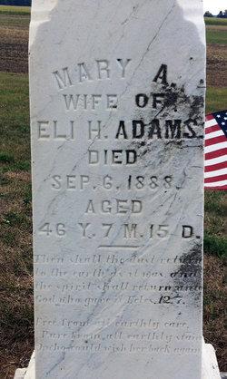 Mary Ann Mollie <i>Davisson</i> Adams