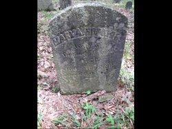 Mary A. <i>Hopkins</i> Newitt