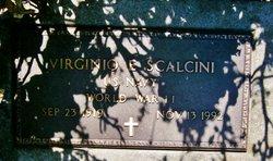 Virginio Erwin Babe Scalcini