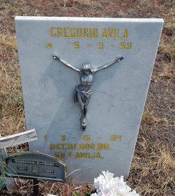Gregorio Avila