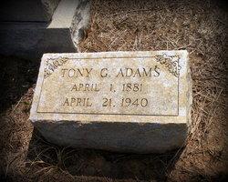 Tony Garfield Adams