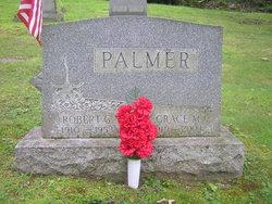 Robert G Palmer