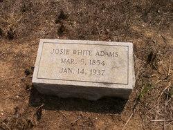 Nancy Josephine Josie <i>White</i> Adams