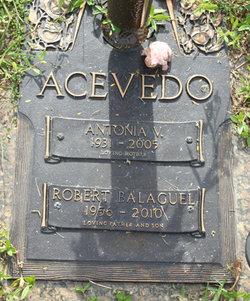 Robert Balaguel Acevedo