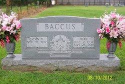 Dean Baccus