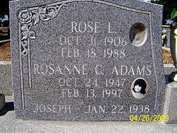 Rosanne Christine <i>Siino</i> Adams
