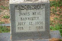 James Neal Bannister