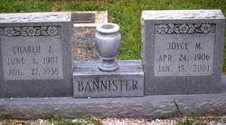 Joyce M Bannister