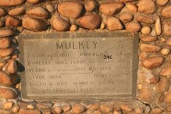 Hiram Mulkey