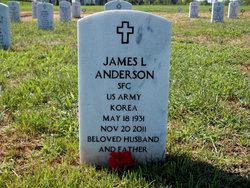 James L. Anderson