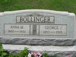 Anna M Bollinger