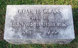 Goar Hayden <i>Glass</i> Bridges