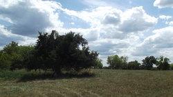 John Atterbury Farm