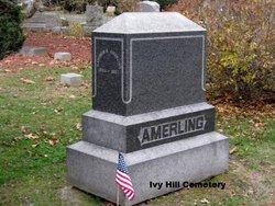 Harmon B Amerling