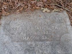 Julia F. Coley Anderson