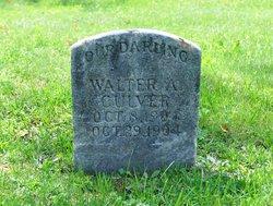Walter A Culver