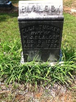 Ella <i>Tucker</i> Blalock