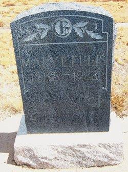 Mary E. Ellis
