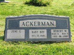 Robert Wilton Ackerman
