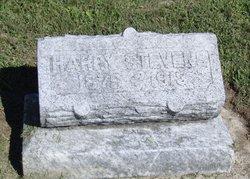 Harry Alfred Stevens