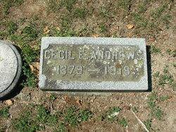 Cecil E. Andrews